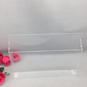 Acrylic Transparent Information Stand